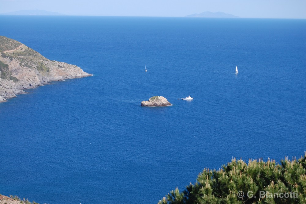 Sailing centers on Elba Island